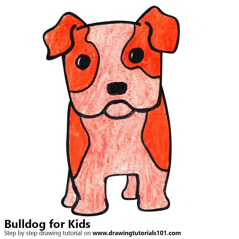 800x800 Learn How To Draw A Bulldog For Kids (Animals For Kids) Step By