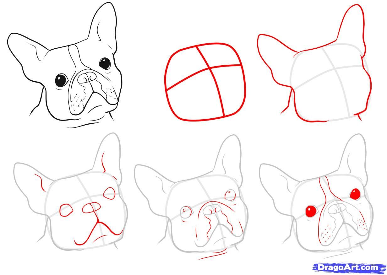 1232x876 Pin By Deniese Berry On Art French Bulldogs, Terrier