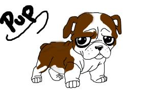 300x200 Concept Design Home Cute Bulldog Drawing Images