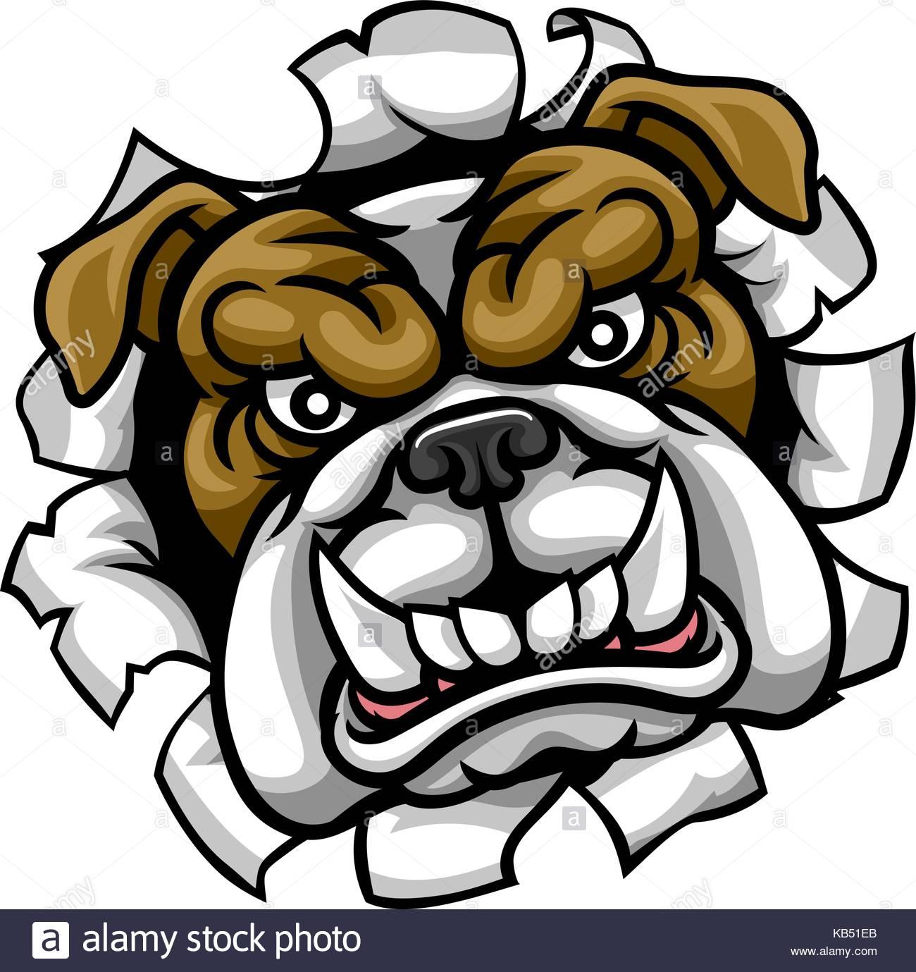 1300x1379 British Bulldog Drawing Stock Photos Amp British Bulldog Drawing