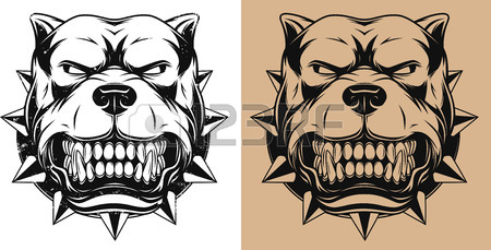 450x229 Vector Illustration Angry Bulldog Mascot Head, On A White