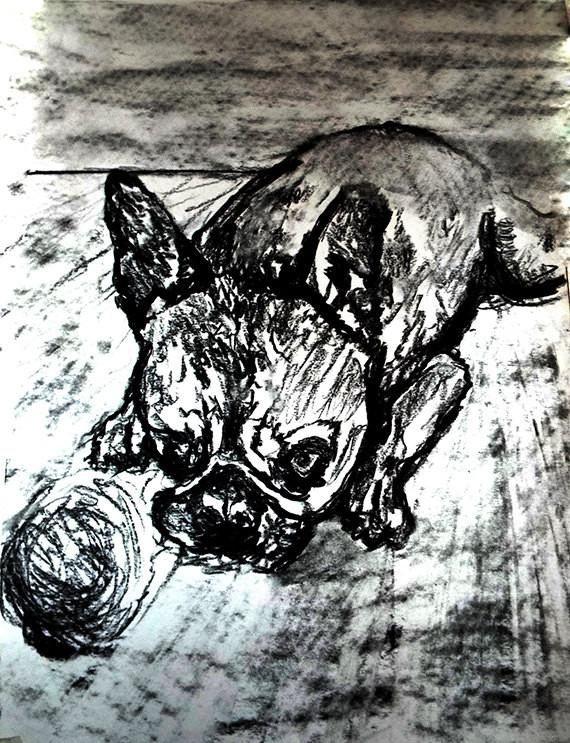 570x743 French Bulldog Dog Art Print, Black And White, Frenchie Dog
