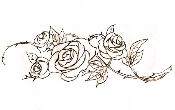 600x376 Roses Lineart By Rose Bullets
