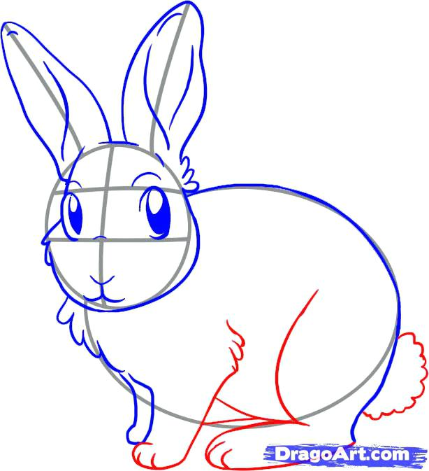 614x673 How To Draw A Bunny Draw Bunny Rabbit Step
