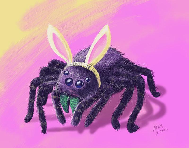 800x628 Tarantula With Bunny Ears ~ My First Digital Draw! By Jadamfox