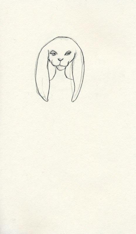 464x800 Bunny Head 10,000 Bad Drawings