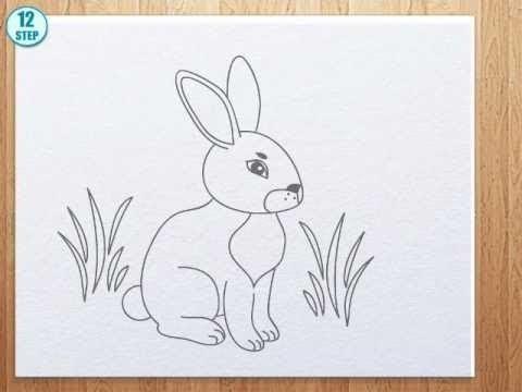 480x360 How To Draw Bunny