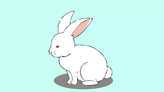 550x309 How To Draw A Bunny Draw Bunny Rabbit Step