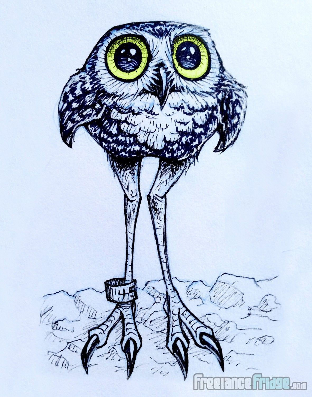 1181x1500 Cute Long Legged Burrowing Owl Cartoon Drawing Sketch My Art