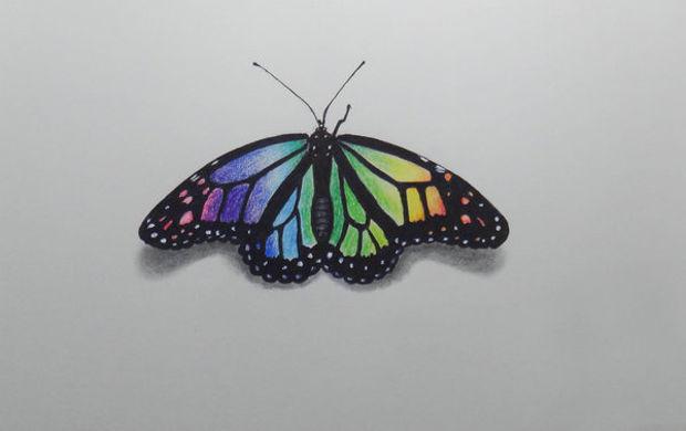620x390 Butterfly Drawings, Art Ideas Design Trends