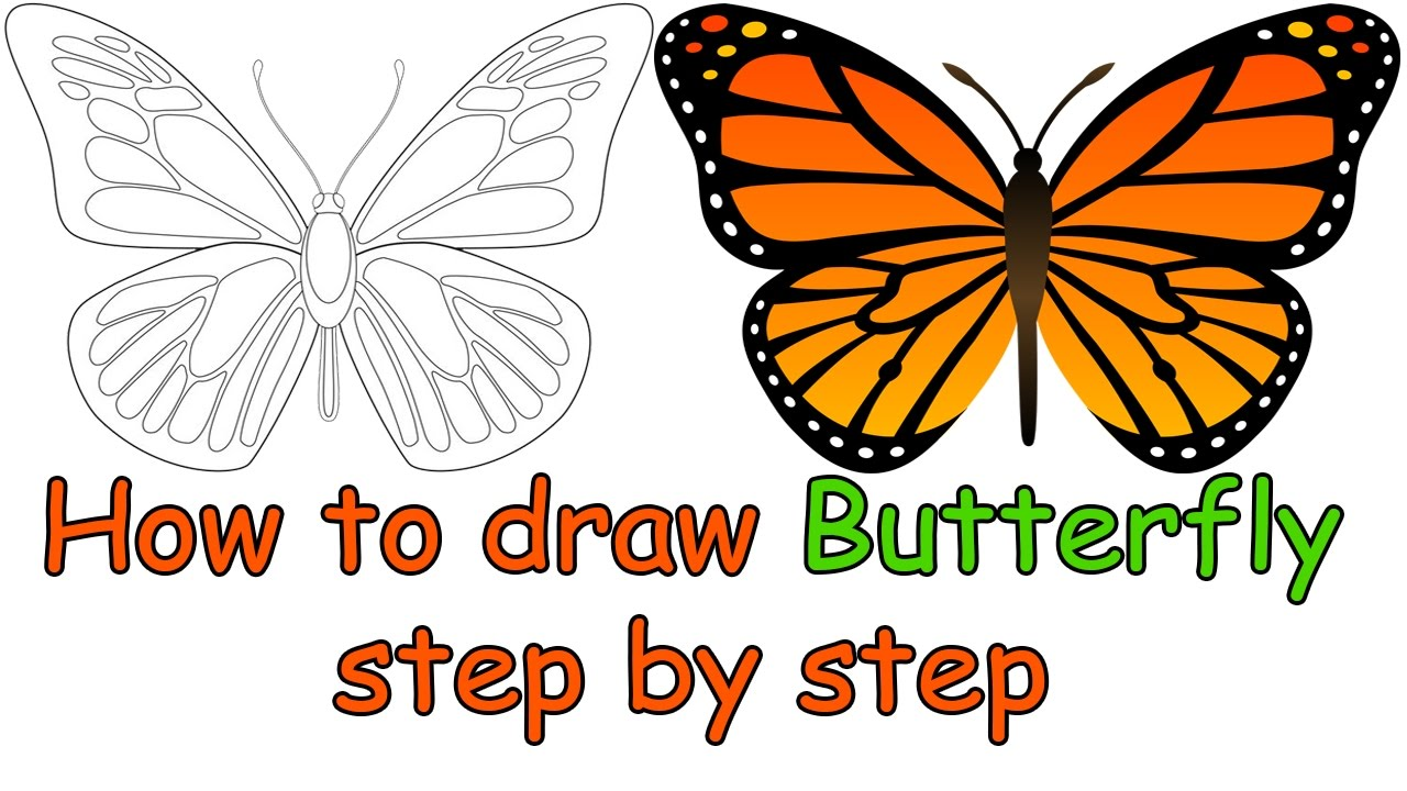 1280x720 How To Draw A Butterfly Step By Step For Beginners For Kids