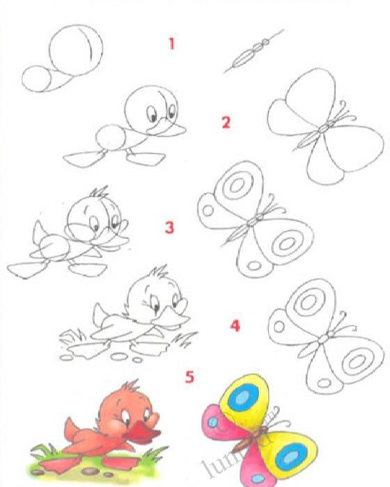 560x699 Pictures For Children To Draw. A Little Duck And A Butterfly, Step