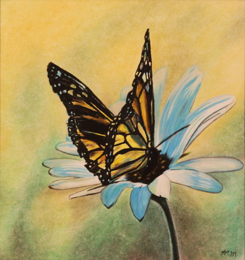 849x900 Butterfly On Flower Drawing By Michelle Miron Rebbe