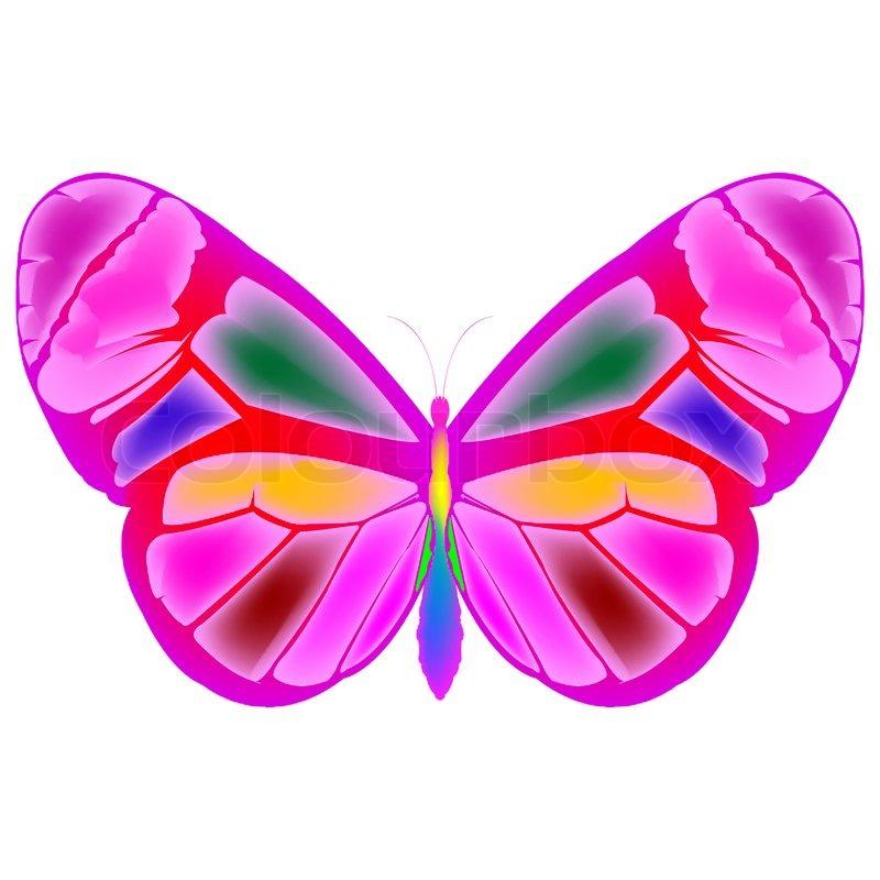 800x800 Butterfly Cartoon Drawing, Art Illustration Stock Photo Colourbox