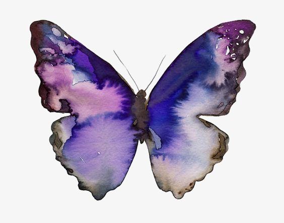 564x443 Purple Butterfly, Creative Butterfly, Drawing Butterfly, Cartoon