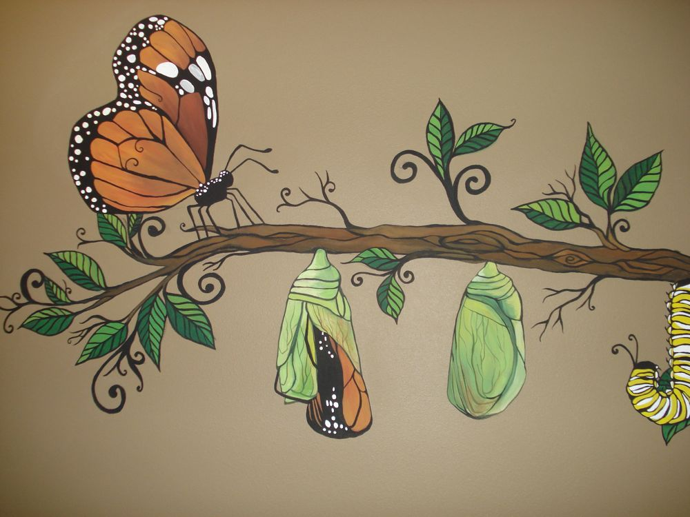 1000x750 Butterfly Cocoon Drawing