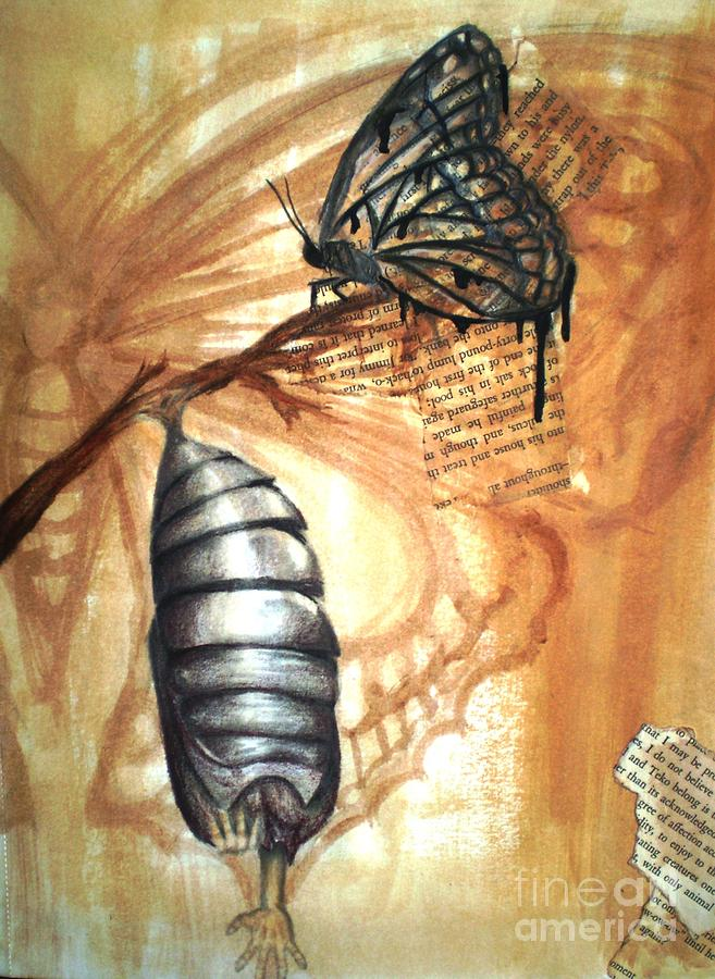 657x900 Cocoon Drawing By Lanie Miller