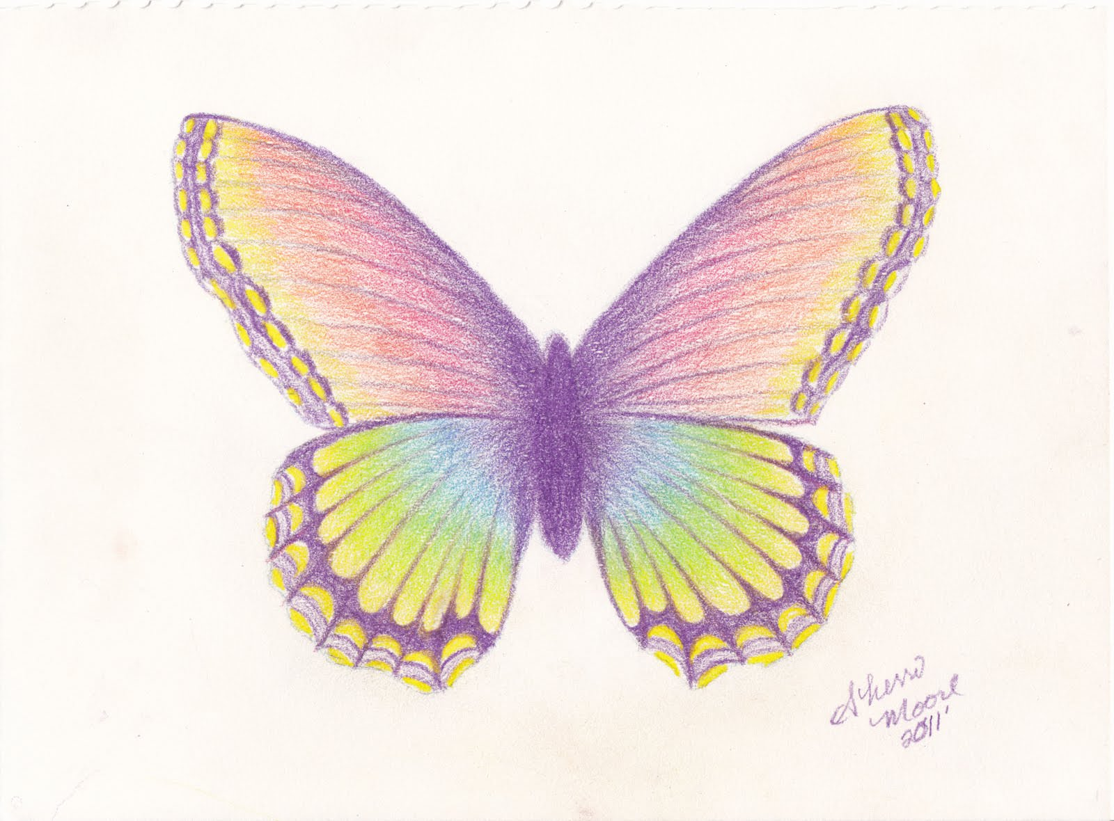 1600x1180 Butterfly Drawings, Art Ideas Design Trends