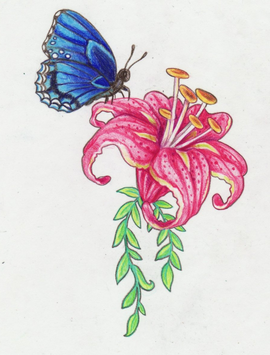900x1183 Colourful Flower Designs Drawings Flower And Butterfly Design By