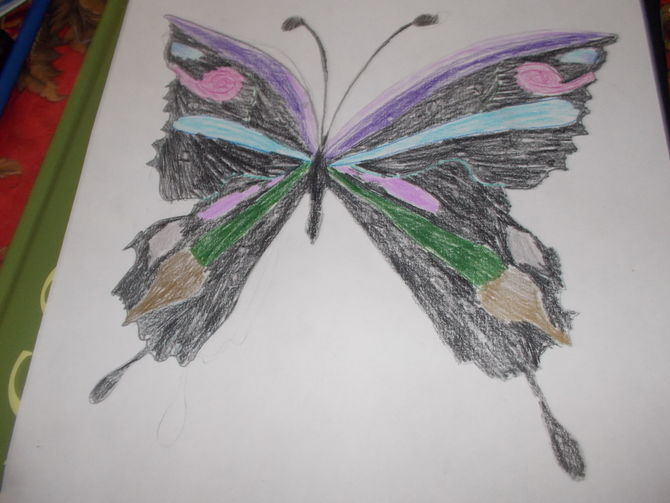 670x503 2 Ways To Draw A Butterfly Step By Step