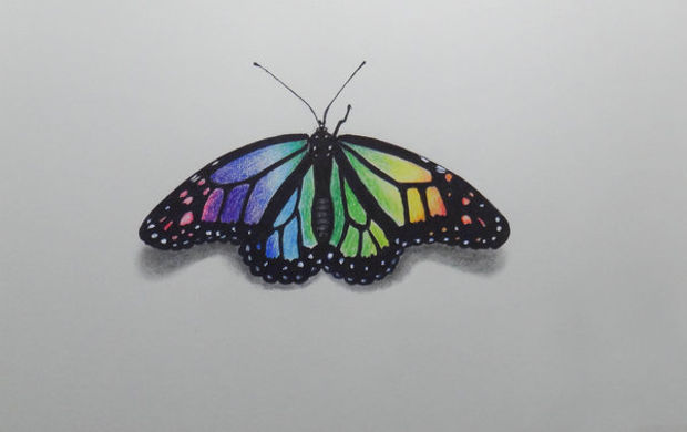 620x390 Butterfly Drawings, Art Ideas Design Trends