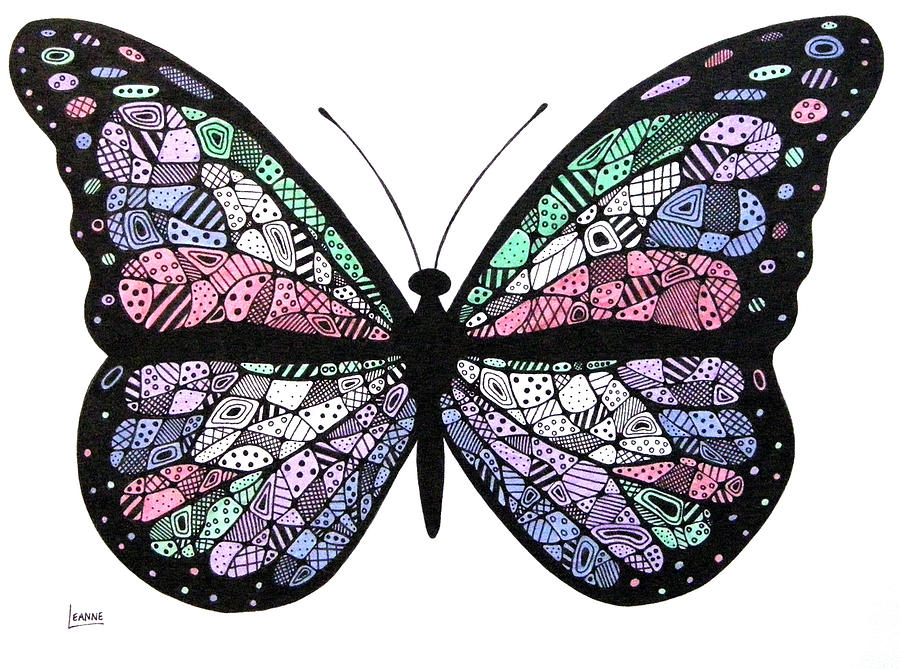 900x669 Butterfly Drawing By Leanne Karlstrom