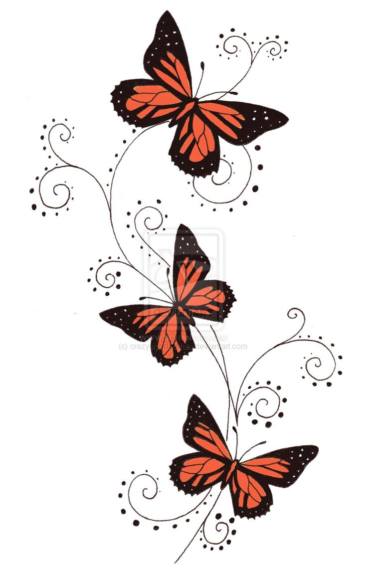 736x1147 Tattoo Butterfly Drawing