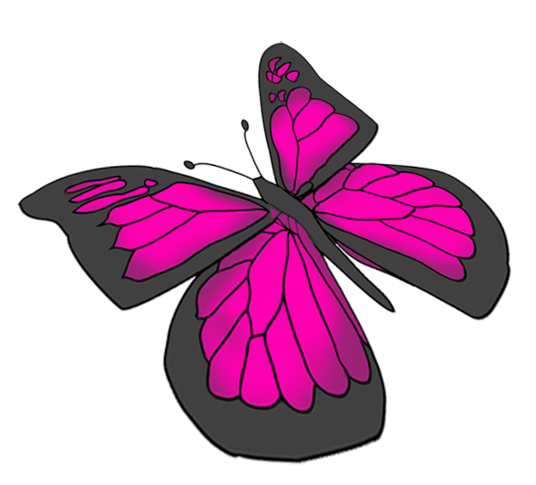 588x532 Beautiful Butterfly Images