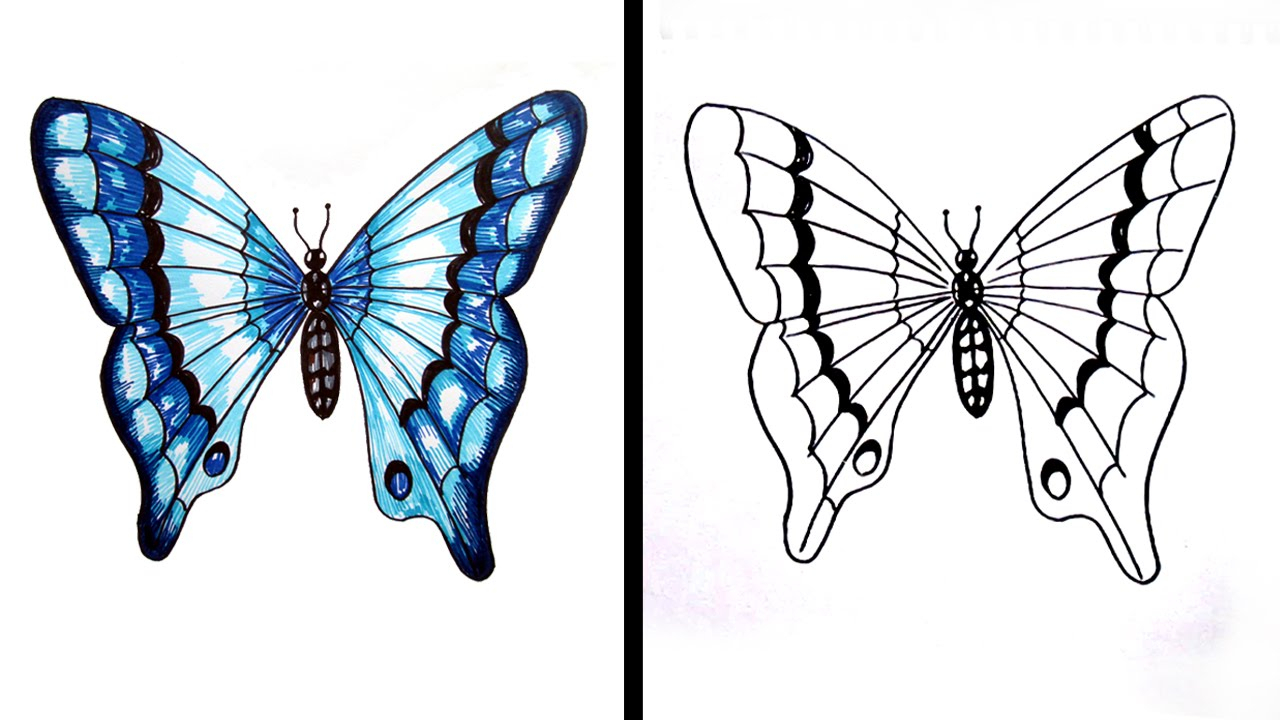 1280x720 Butterfly Drawings Easy