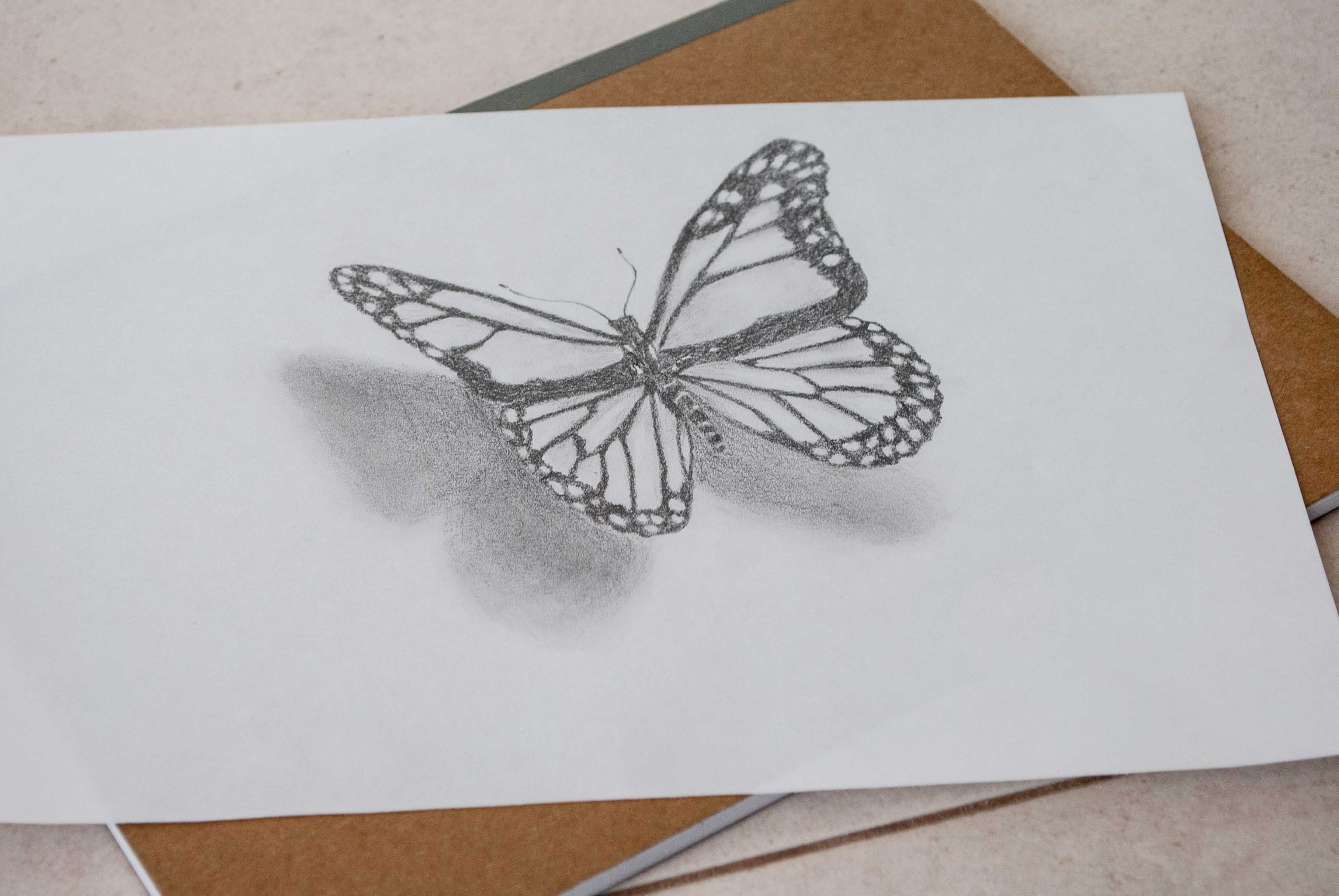 3631x2431 Butterfly Drawing In 3d. Step By Step Steemit