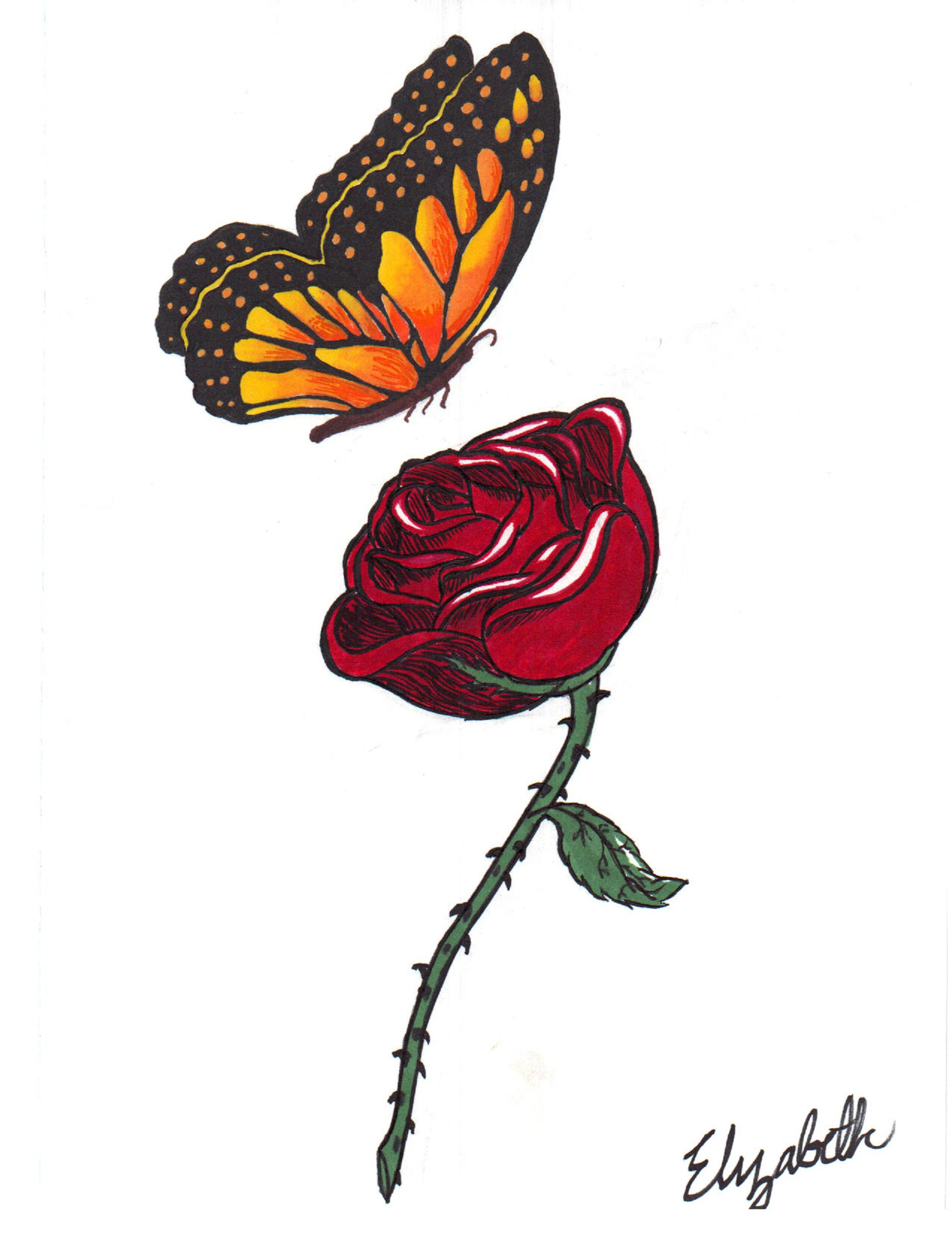 1912x2475 Rose And Butterfly Drawing Butterfly Drawings, Art Ideas