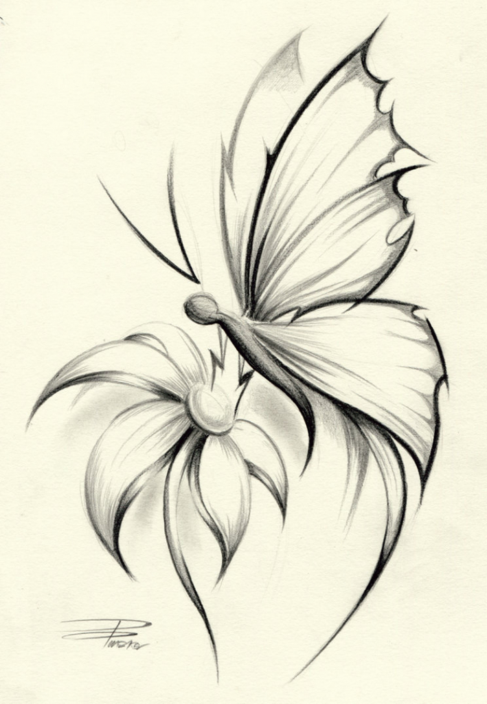 709x1024 easy pencil drawings of butterfly original design of a large