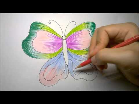 480x360 How To Draw Butterfly Step By Step How To Draw Butterfly Wings