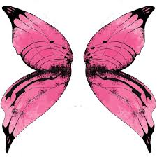 225x224 Image Result For Fairy Wings Drawing Fairy Wings