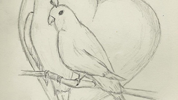 570x320 Beautiful Pencil Sketches Of Love Beautiful Love Couple Cute