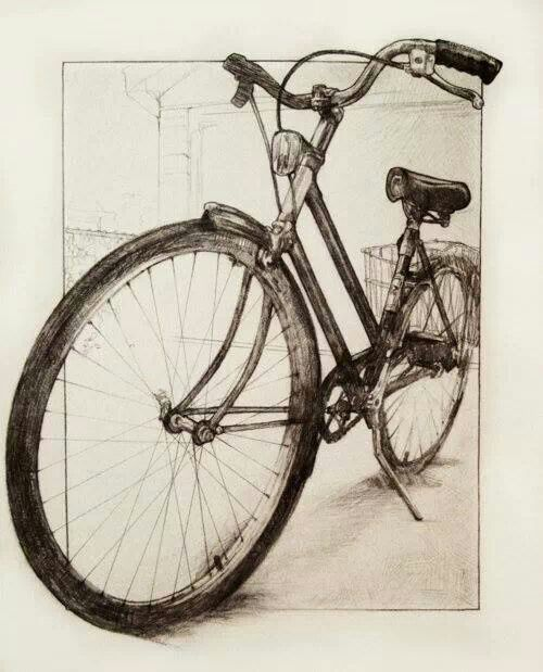 500x619 Drawing Bicycle Study