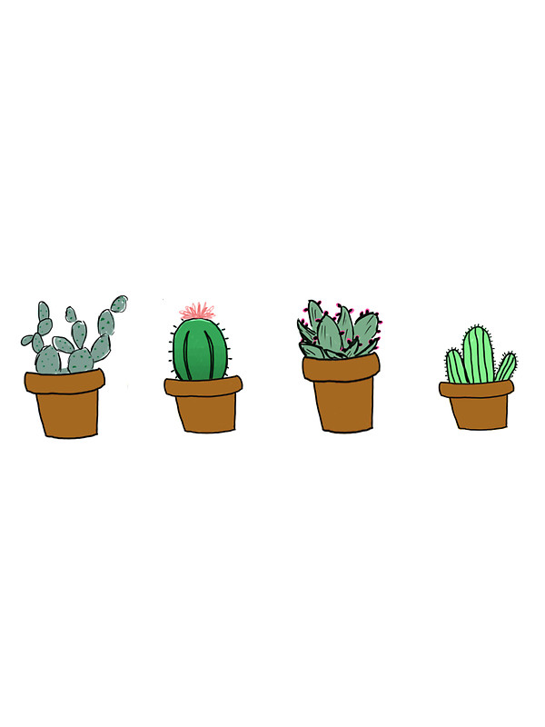 Cactus Tumblr Drawing At Getdrawings Com Free For