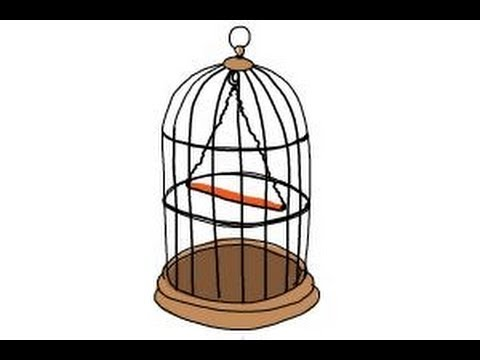 480x360 How To Draw A Bird Cage