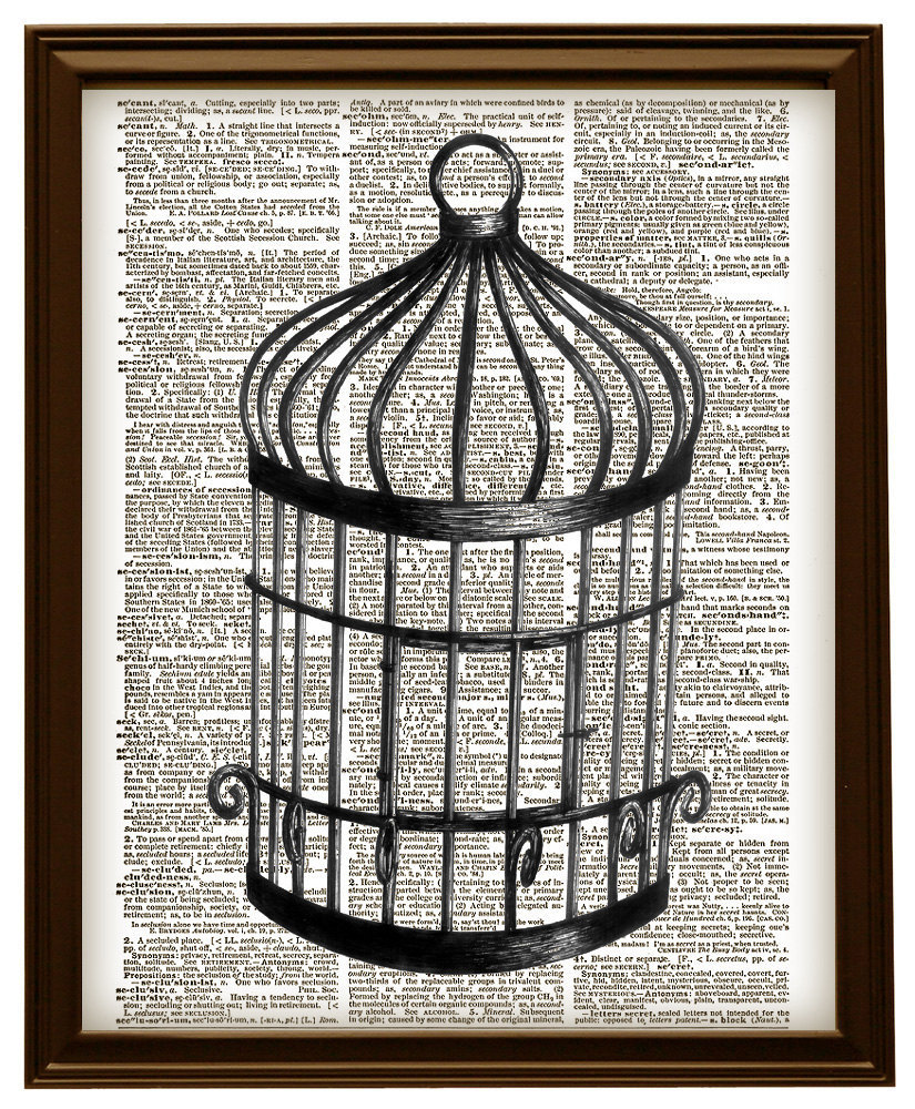 825x1000 Lovely Vintage Bird Cage Drawing Black And And 50 Similar Items
