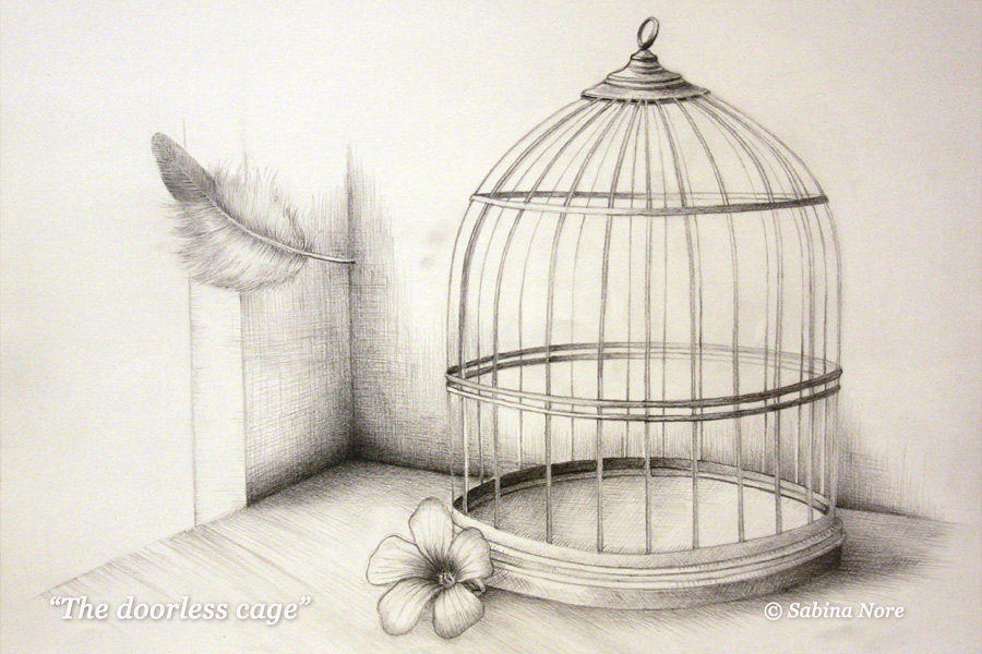 900x600 The Doorless Cage By Sabinanore