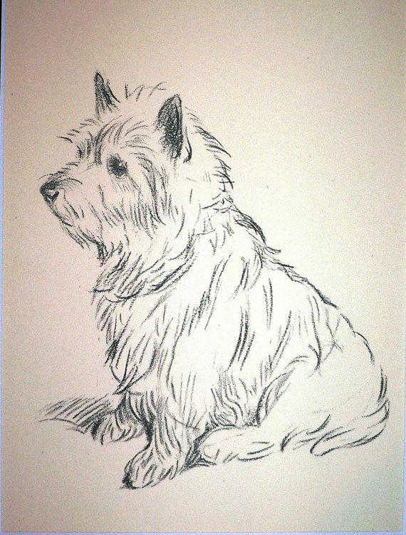 570x752 Cairn Terrier Chien Plaque De Vintage 1937 Par Hollysprints