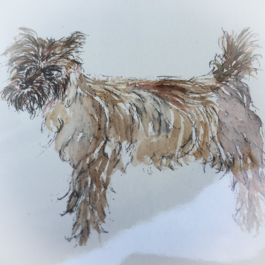 1024x1024 Cairn Greetings Card (Diane Wilkinson) Cairn Terrier Collectibles