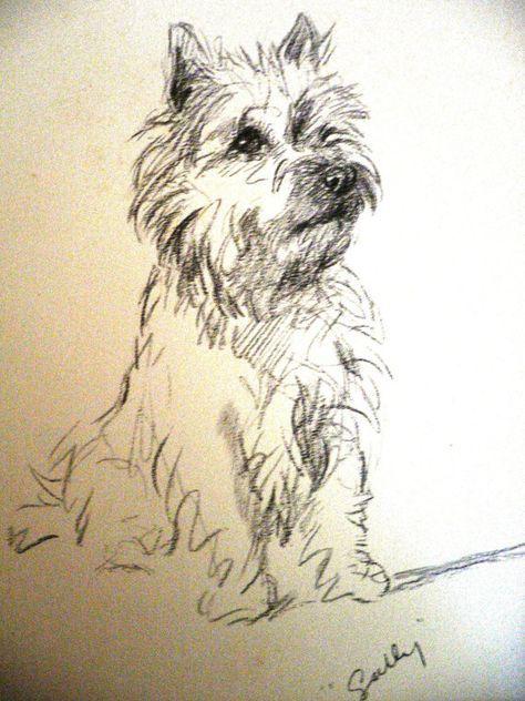 474x632 Cox High Speed Internet Webmail Art Dogs Ii Cairn