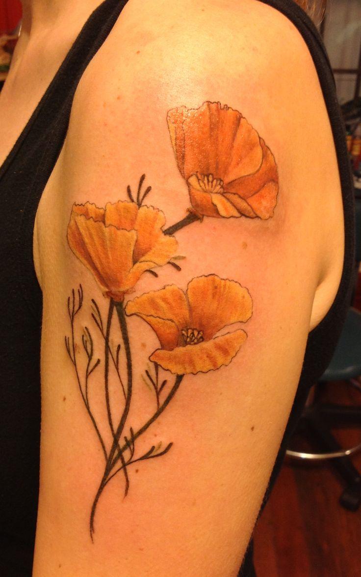736x1174 California Poppy Drawing Trending California Poppy Tattoo