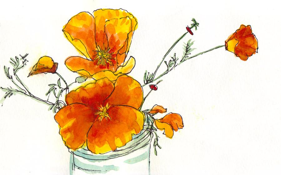 900x560 Drawing Jana Bouc, Artist Page 14