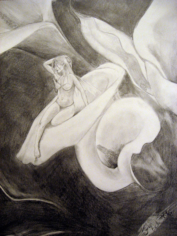 2112x2816 Calla Lily Pencil Drawing