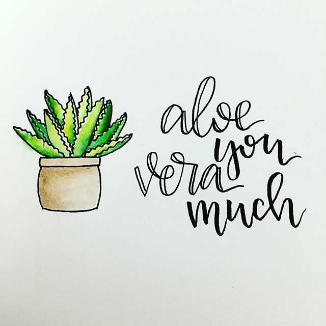 640x640 Aloe You Vera Much Watercolor, Painting, Handlettering,