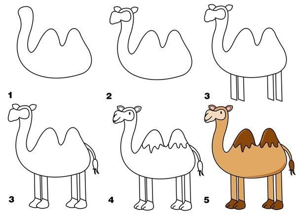 604x433 Pin By Liza Van Der Meer On Drawing With Kids Camels