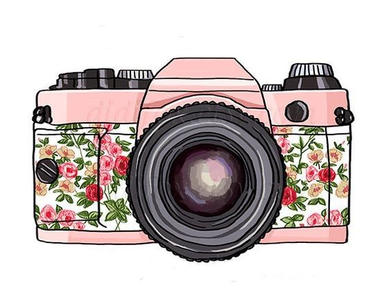 564x435 Pin By Lady Bugs On Art Photography