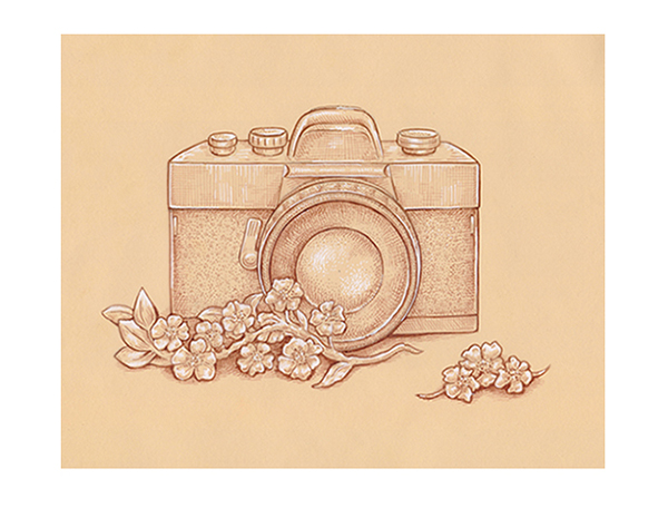 600x456 How To Draw A Vintage Camera With Sepia Ink Liners On Toned Paper